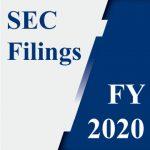 SEC Filings 2020